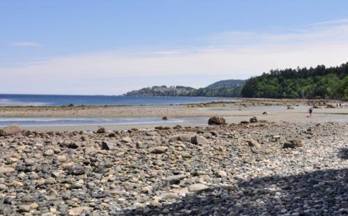 Invermere Beach, Nanaimo BC, Off Leash Dog Area